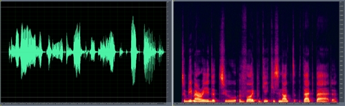 waveform vs spectral display Asterisk & HDVoice: Hearing The Siren's Song Part 2