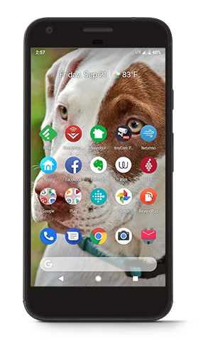 Google Pixel (Very Black)